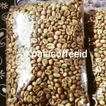 Green bean 1kg biji kopi robusta lampung red cherry petik merah